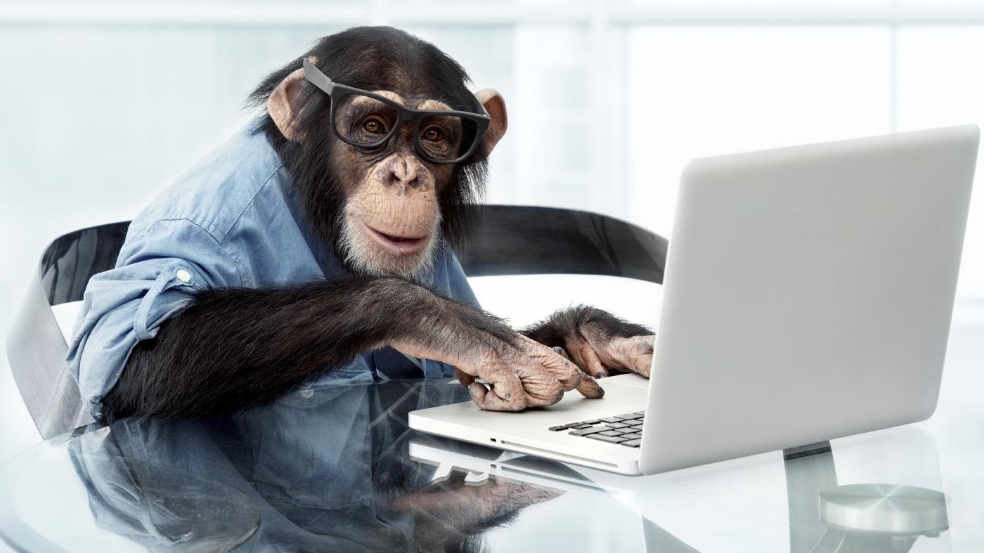 Monkeying Around With Typewriters David Hayes